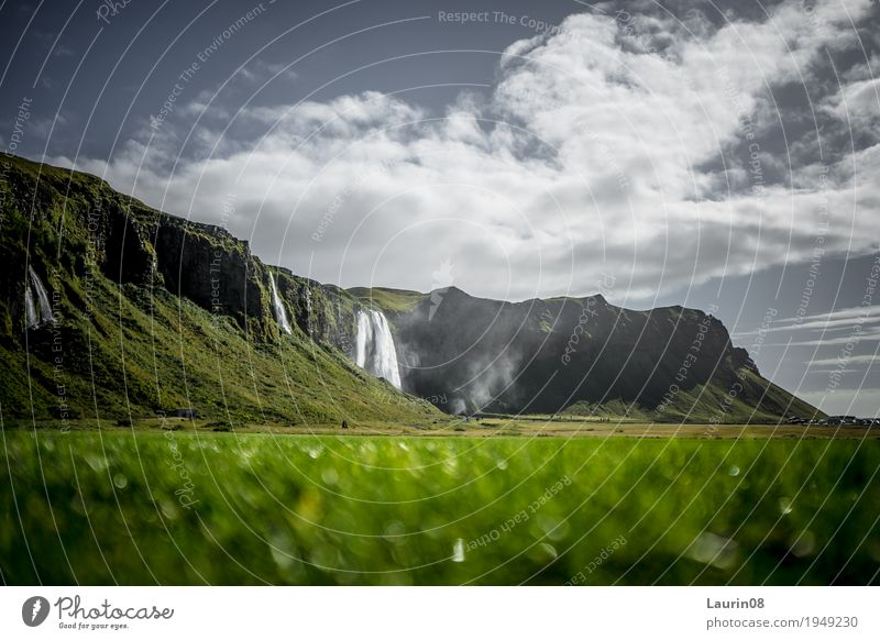 Seljalandsfoss waterfall on Iceland Vacation & Travel Tourism Trip Adventure Far-off places Freedom Summer Mountain Hiking Nature Landscape Plant Elements Earth
