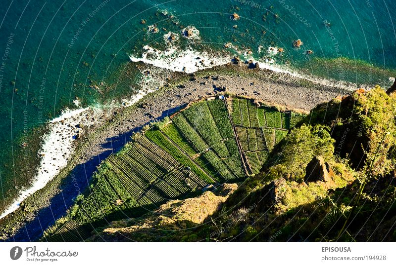 View of Cabo Girao, Madeira island. Beautiful Ocean Landscape Europe Tourism Agriculture Tourist Portugal Vantage point Cliff Atlantic Ocean Human being Air