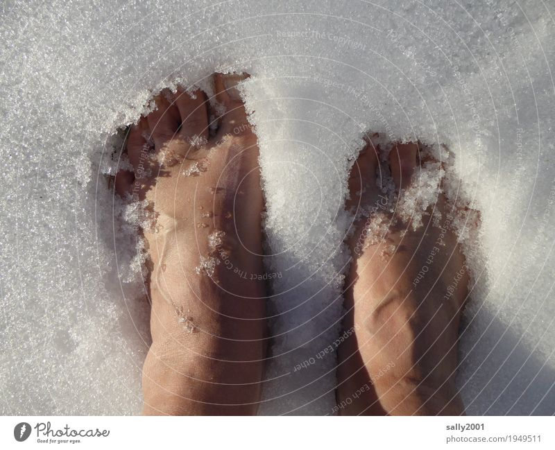 Human being Naked White Winter Cold Snow Feminine Feet Ice Skin Climate Cool (slang) Elements Frost Freeze Refrigeration