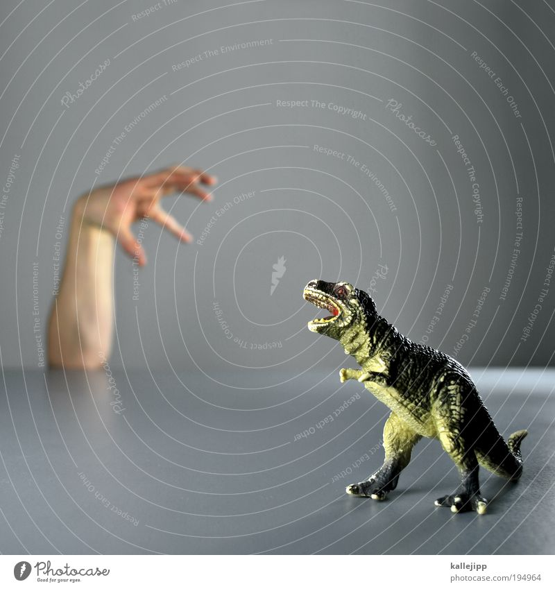 Hand Animal Power Arm Fingers Animal face Toys Science & Research Statue Hunting Fight Paw Biology Light Contrast Human being
