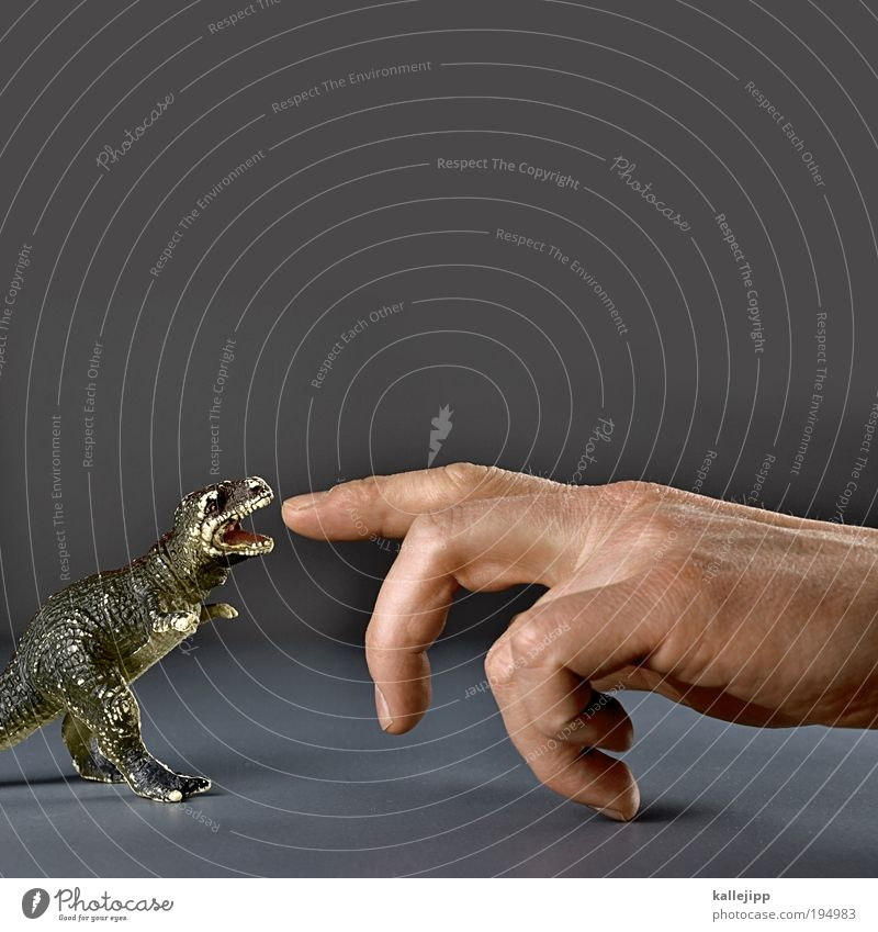 finger food Hand Fingers Animal Claw Paw To feed Dinosaur Forefinger Biology Evolution Set of teeth Bite Hunting Primitive times Saurians Reptiles