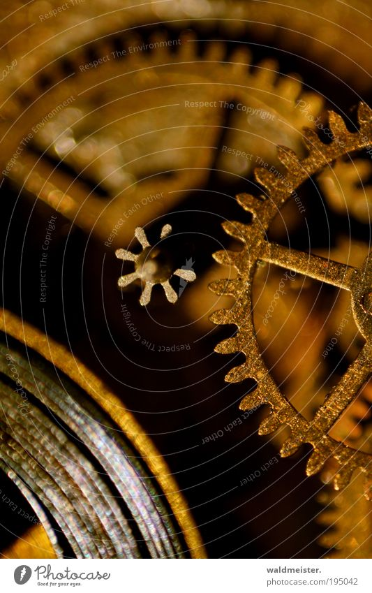 Old Calm Time Brown Gold Wait Clock Nostalgia Mechanics Machinery Gearwheel Watch mechanism Measuring instrument Macro (Extreme close-up) Prompt Time machine