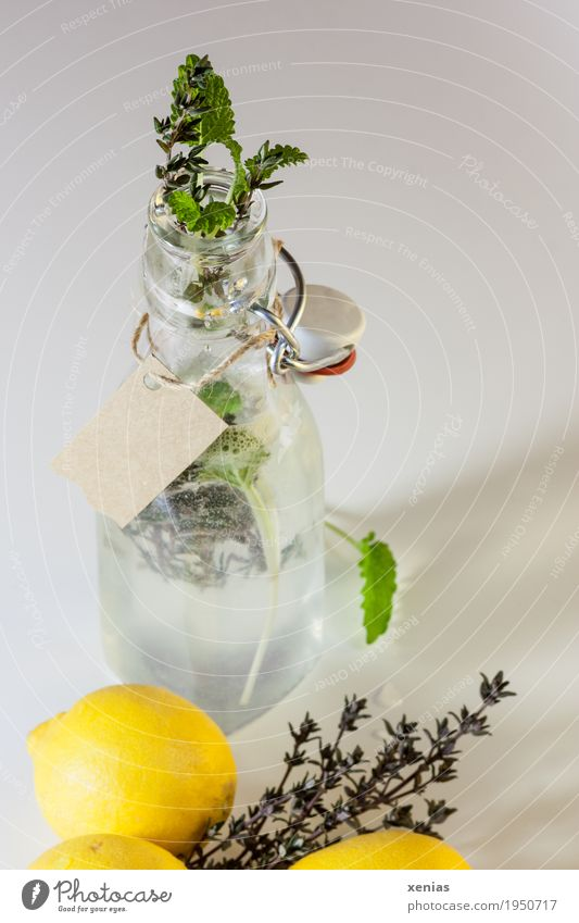 Lemonade in bottle with label Fruit Herbs and spices Mint Thyme Beverage Cold drink Drinking water Bottle Healthy Eating Sour Yellow Green clip-on bottle