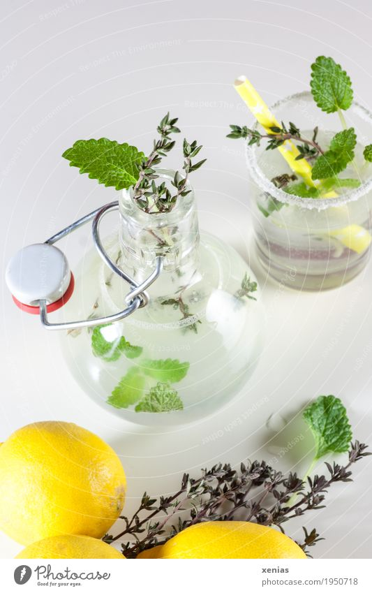 Lemonade with mint and thyme Herbs and spices Thyme Mint lemonade Beverage Cold drink Drinking water Bottle Glass Straw Healthy Eating Fresh Sour Sweet Yellow