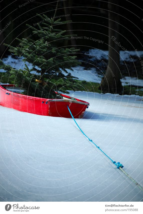 Ark of Climate Change Tree Watercraft Rope Wood Exceptional Cool (slang) Uniqueness Funny Blue Green Red White Loneliness Elegant Colour Surprise Frozen surface