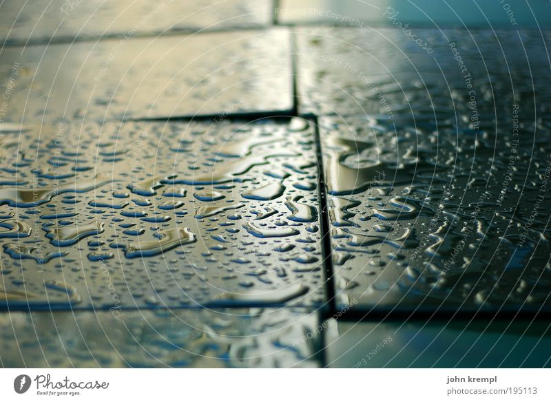 puzzle for doofe Bad weather Rain Thunder and lightning Table Plastic Wet Sadness Longing Esthetic Drop Drops of water Island Glittering Reflection guest garden