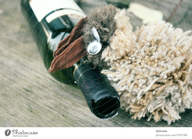 Animal Beverage Wine Illness Alcoholic drinks Nutrition Alcoholism Addiction Lack of inhibition Debauchery