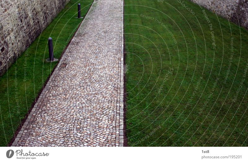 Nature Green Street Wall (building) Environment Grass Lanes & trails Wall (barrier) Fresh Esthetic Clean Manmade structures Cobblestones Landmark