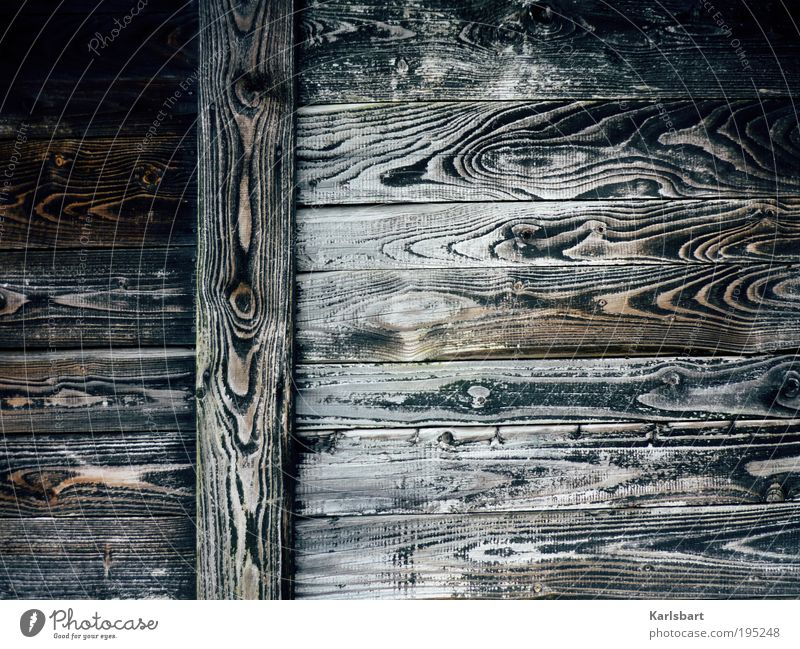 Nature Dark Style Wood Line Poverty Design Crazy Lifestyle Change Decoration Protection Living or residing Transience Stripe Hut