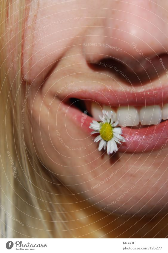 Human being Youth (Young adults) Beautiful Sun Summer Flower Joy Face Meadow Emotions Happy Laughter Moody Contentment Mouth