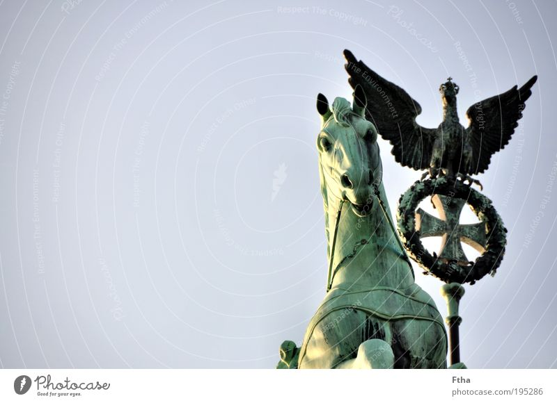 Horse and bird Statue Tourist Attraction Brandenburg Gate Quadriga Old Esthetic Copper Verdigris Green undertone Colour photo Exterior shot Day Detail