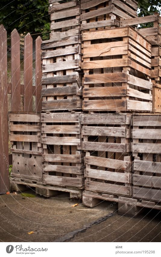 confidence man Industry Trade Logistics Box Box of fruit Wood Old Sharp-edged Retro Trashy Brown Accuracy Contentment Arrangement Colour photo Exterior shot Day