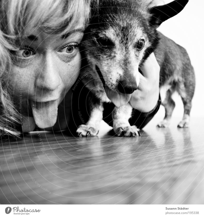 Youth (Young adults) Face Love Animal Playing Happy Hair and hairstyles Dog Head Friendship Together Funny Adults Small Portrait photograph Animal face