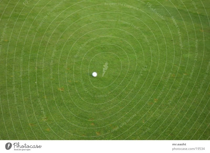White Sports Golf course Ball Lawn Golf ball Stationary