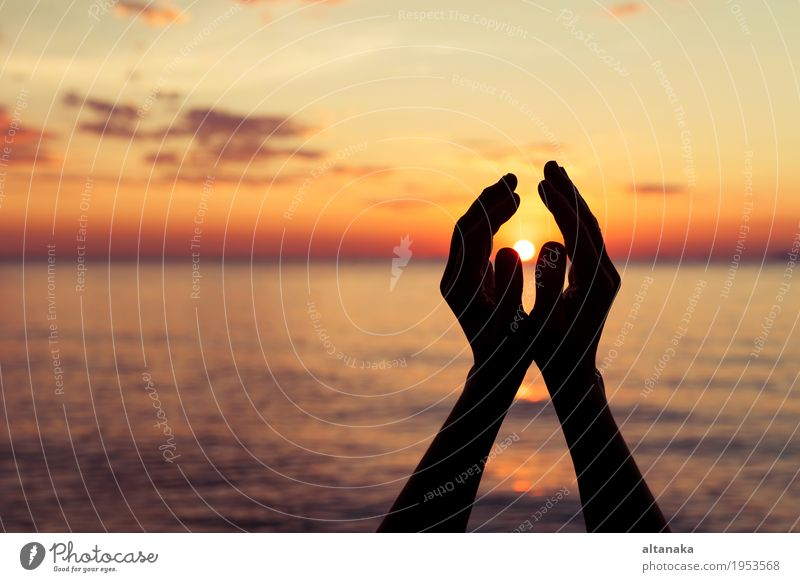 silhouette of female hands during sunset Lifestyle Harmonious Freedom Summer Sun Beach Human being Hand Fingers Nature Sky Love Happiness Bright Serene Hope