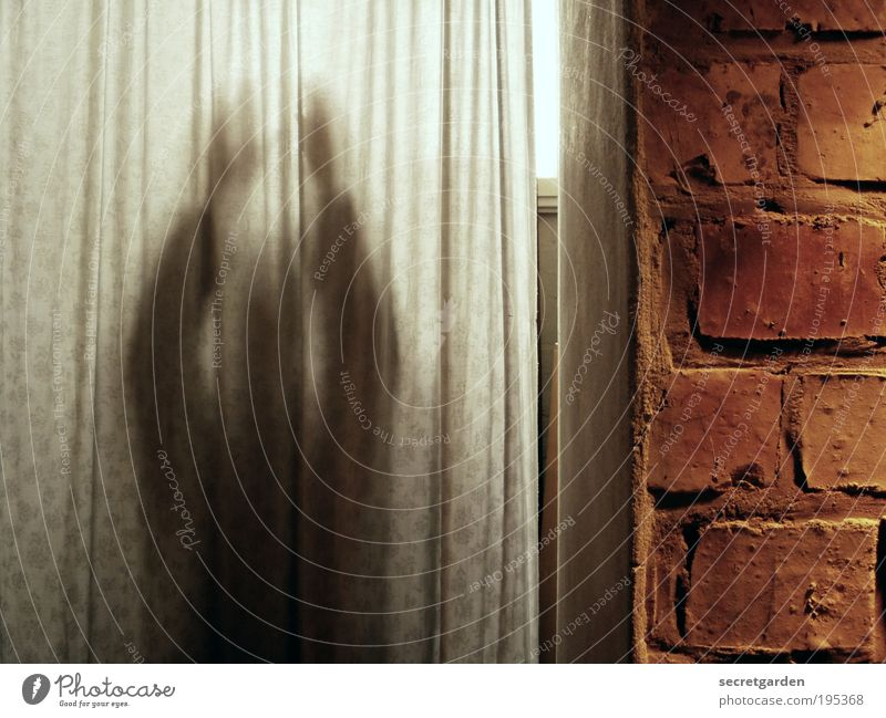 Human being Man White Adults Dark Wall (building) Stone Wall (barrier) Dream Brown Room Door Fear Facade Living or residing Threat