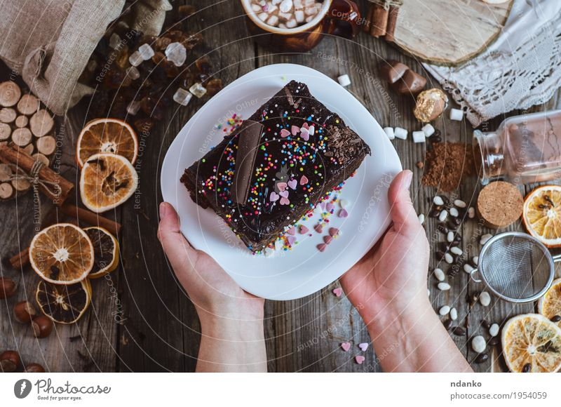 Plate with chocolate Sachertorte in female hands Cake Dessert Candy Eating Breakfast Beverage Hot Chocolate Coffee Decoration Table Restaurant Woman Adults Arm