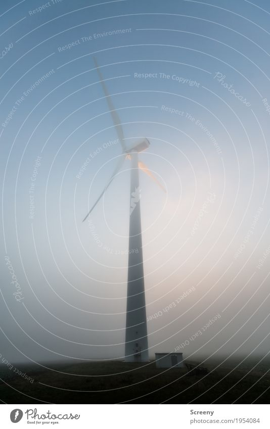 the white giant Technology Energy industry Renewable energy Wind energy plant Environment Sky Autumn Fog Field Large Tall Environmental protection Colour photo