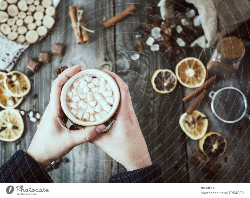 Women's hands are holding a cup of hot drink Human being Woman Youth (Young adults) White Hand 18 - 30 years Adults Eating Wood Gray Brown Above Fruit Decoration Arm Table