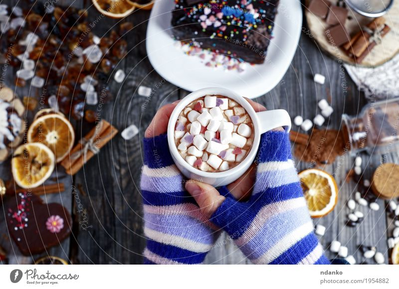 cup of hot cocoa in female hands Fruit Dessert Herbs and spices To have a coffee Beverage Hot Chocolate Coffee Mug Winter Table Young woman Youth (Young adults)