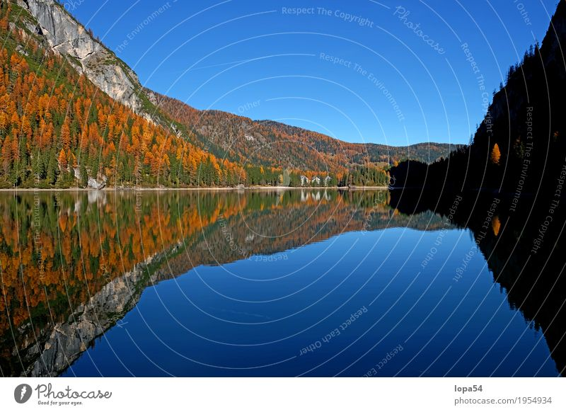 Braies Lake in the Dolomites, South Tyrol, Italy Environment Nature Landscape Plant Water Sky Sunlight Autumn Beautiful weather Tree Foliage plant Larch Forest
