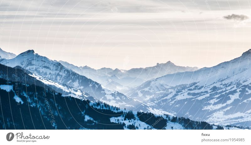 View from the Beatenberg Mountain Bernese Oberland Switzerland Rock Alps niederhorn Winter Hiking Vantage point Background picture Landscape Nature