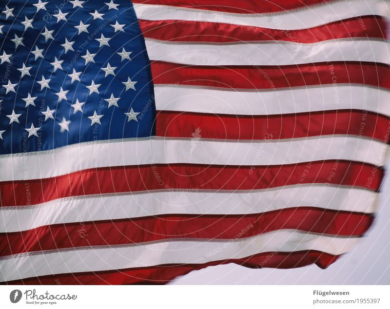 Vacation & Travel Clouds Far-off places Freedom Tourism Trip Wind USA Future Adventure Americas Flag American Flag Sightseeing War Politics and state