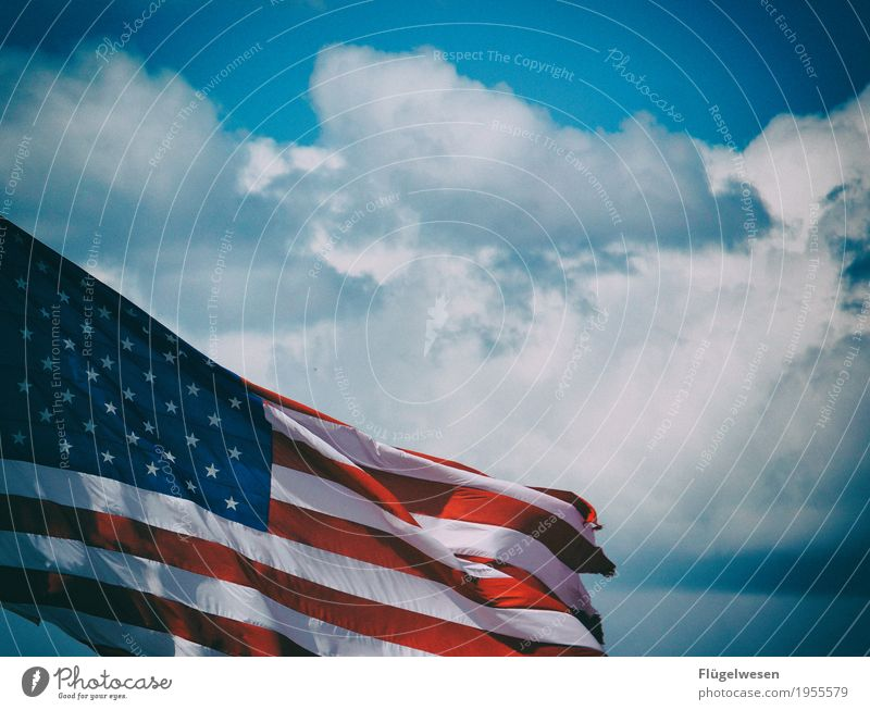 Vacation & Travel Clouds Far-off places Movement Freedom Tourism Trip Wind USA Future Adventure Americas Flag American Flag Sightseeing War