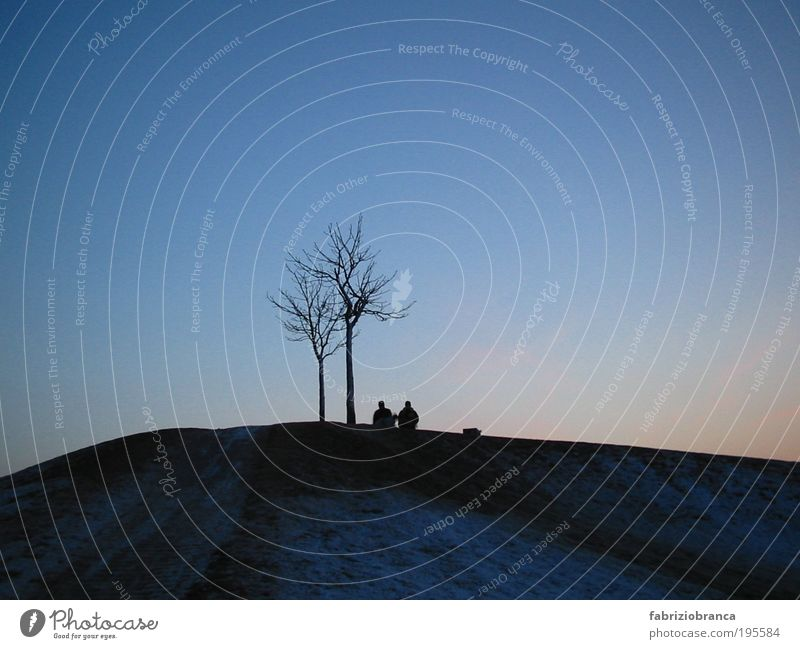 togetherness Human being Couple Partner 2 Nature Landscape Air Sky Cloudless sky Night sky Horizon Tree Hill Peak Think To talk Communicate Dream Sadness Wait