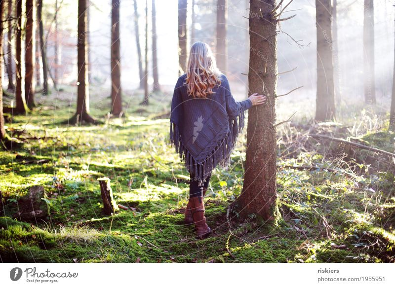 Human being Woman Nature Youth (Young adults) Plant Young woman Sun Landscape Relaxation Forest 18 - 30 years Adults Environment Spring Natural Feminine