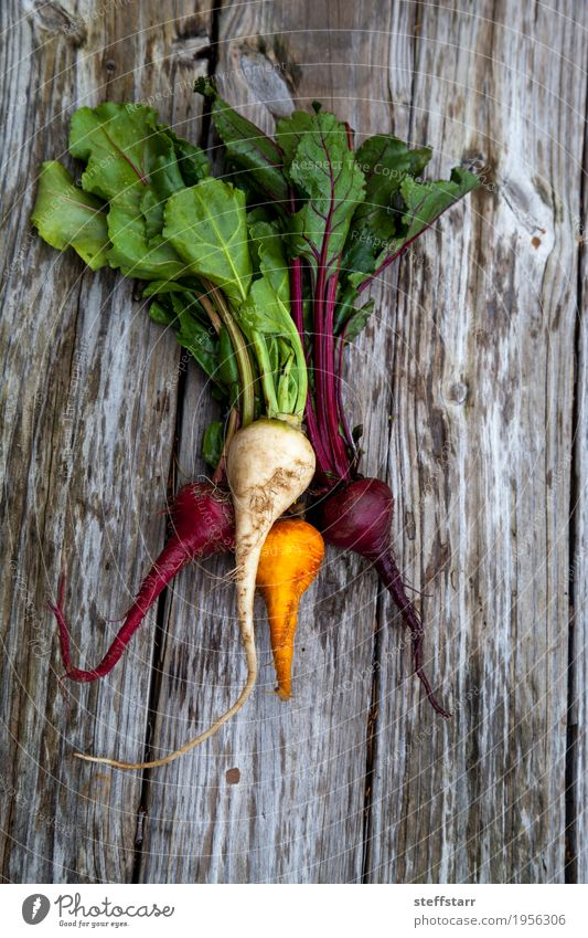 Red, orange and yellow beets Plant Green Healthy Eating Red Eating Yellow Natural Healthy Food Brown Orange Nutrition Table Vegetable Farm Organic produce