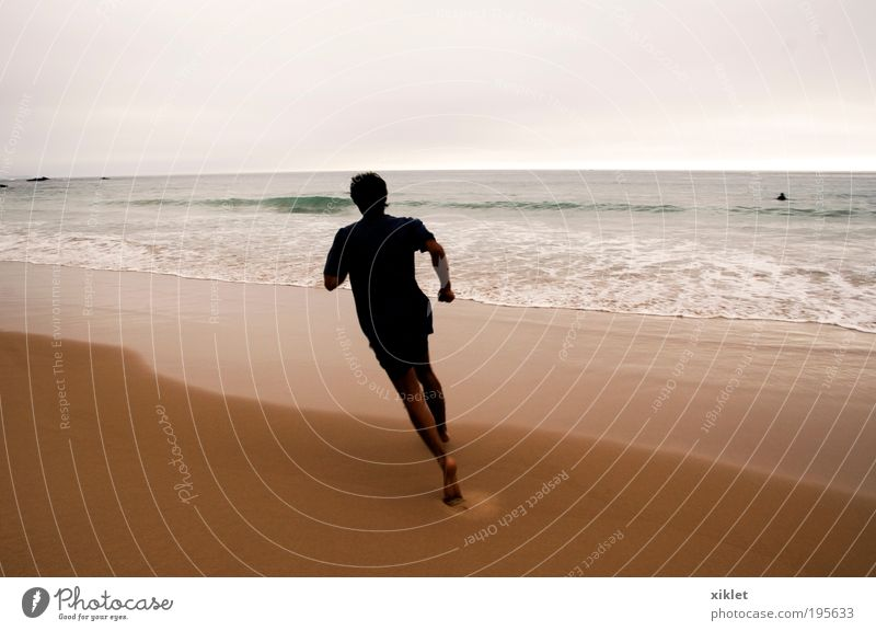 Sport am Strand Fitness Sports Training Track and Field Jogging Masculine Young man Youth (Young adults) 1 Human being 18 - 30 years Adults Nature Sand Summer
