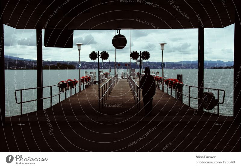 Waiting for the next ship Trip Freedom 1 Human being Nature Water Sky Clouds Autumn Storm Flower Lakeside Lake zurich Harbour Public transit Navigation