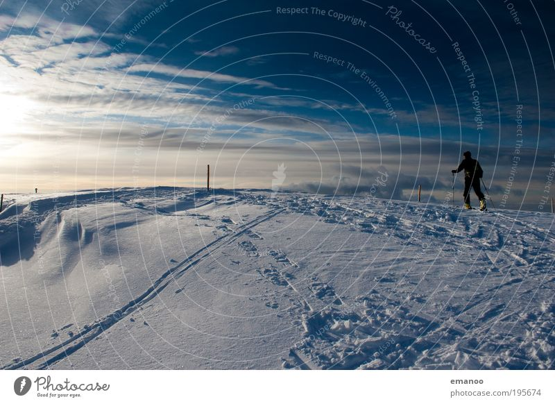 Human being Nature Youth (Young adults) Young man Joy Winter Mountain Snow Freedom Going Masculine Weather Ice Hiking Walking Climate