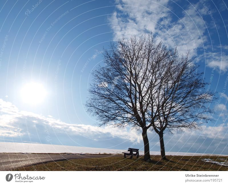 Snow Melt II Winter Nature Landscape Earth Air Sky Clouds Sunlight Beautiful weather Tree Field Attachment Couple 2 Bench Vantage point tranquillity Relaxation