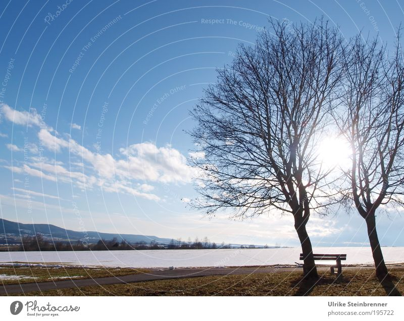 Snowmelt I Winter Nature Landscape Earth Air Clouds Sunlight Beautiful weather Tree Field Attachment In pairs 2 Bench Vantage point Calm Relaxation Swabian Jura