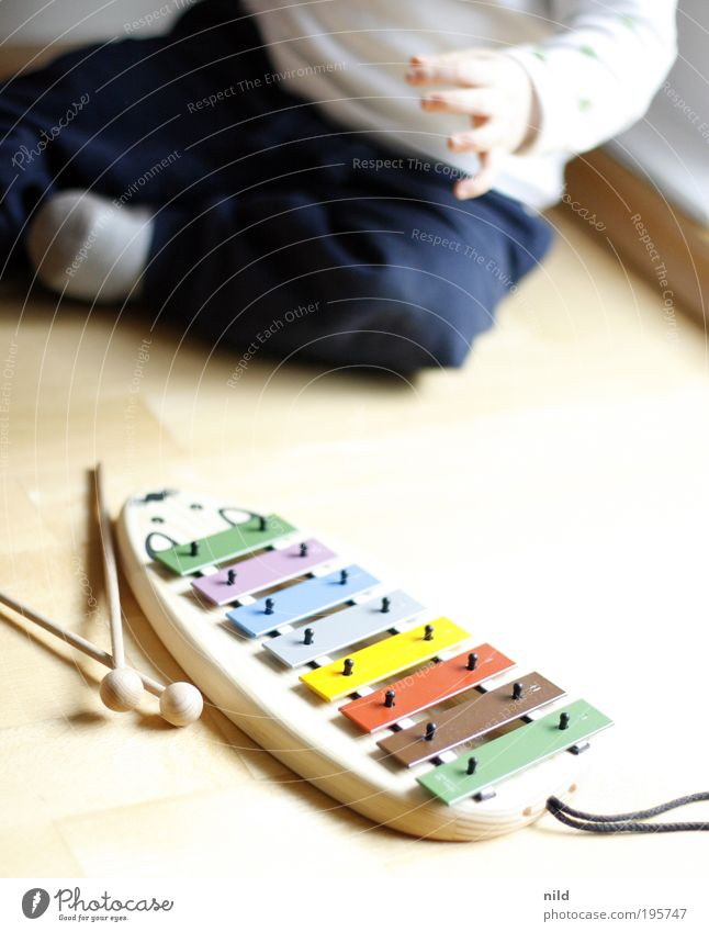 Early musical education Parenting Child Baby Toddler Infancy 1 Human being 0 - 12 months 1 - 3 years Music Musician Xylophone Glockenspiel Discover Crawl Study