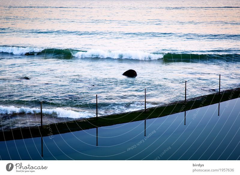 Rest and movement Waves Water Coast Swimming pool Swimming & Bathing Exceptional Maritime Calm Movement Energy Relaxation Contentment Luxury Moody Divide