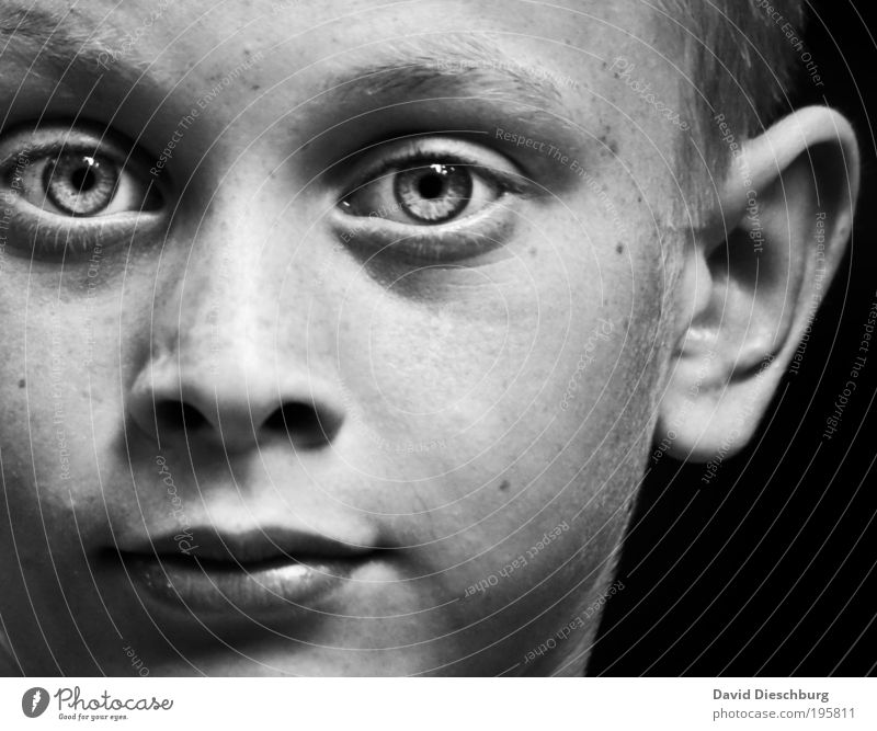 daydreamer Human being Boy (child) Infancy Skin Head Face Eyes Ear Nose Mouth Lips 1 8 - 13 years Child Authentic Pupil Black & white photo Contrast