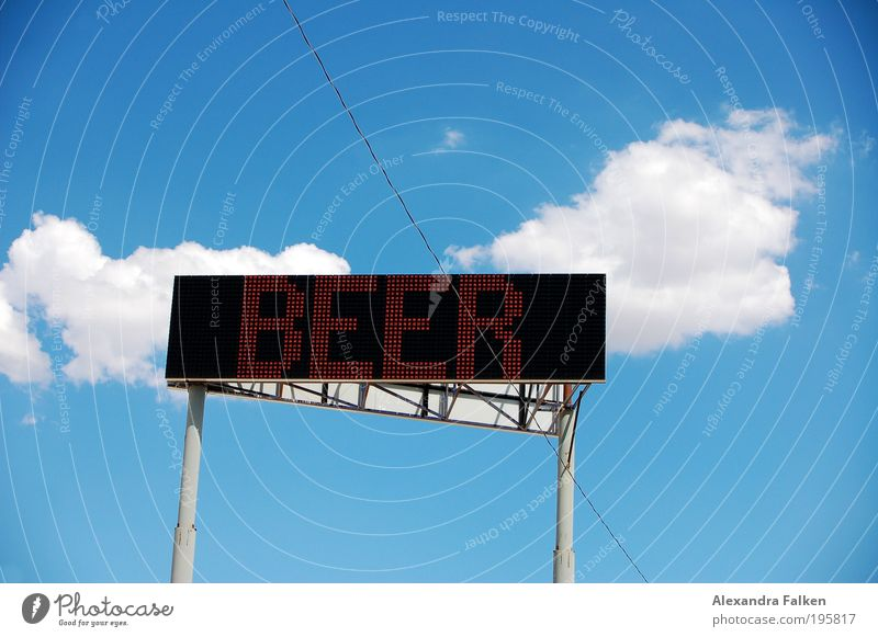 Today we have beer II Alcoholic drinks Summer Event Signs and labeling Feasts & Celebrations Joy Addiction Advertising Screen Alcoholism Beer Stadium Gastronomy