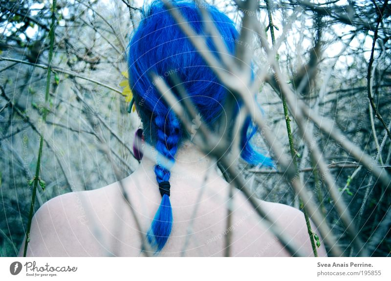 Human being Nature Youth (Young adults) Blue Colour Adults Environment Life Feminine Wood Head Hair and hairstyles Garden Dream Bright Back
