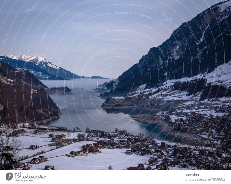 Bath in the fog-lake Calm Environment Nature Landscape Elements Earth Air Water Sky Winter Weather Beautiful weather Fog Rock Alps Mountain Peak Lakeside Bay
