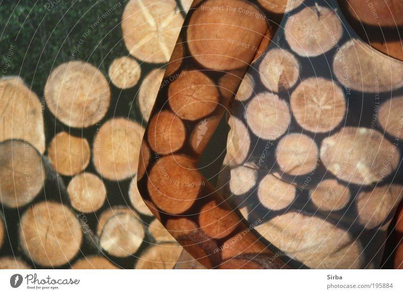 blockhead Chest Arm Tree T-shirt Climate Colour photo Interior shot Experimental Artificial light Light Upper body