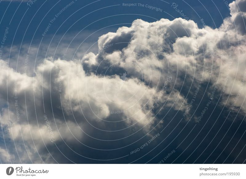 Nature Beautiful White Blue Clouds Far-off places Above Air Fog Weather Environment Infinity Natural Illuminate Elements Beautiful weather