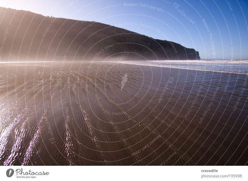 Nature Beautiful Sky Ocean Joy Beach Forest Dark Happy Landscape Contentment Waves Coast Environment Esthetic Joie de vivre (Vitality)