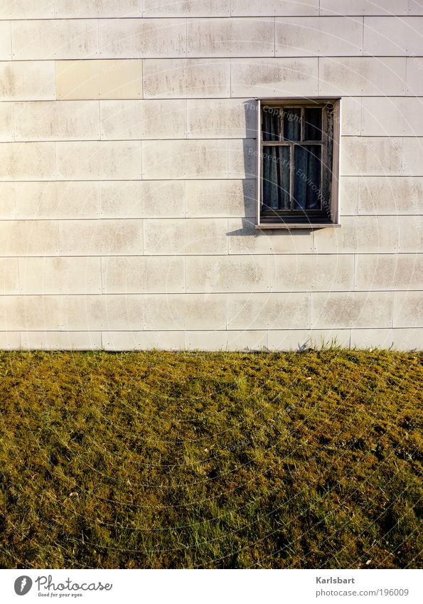 Nature Vacation & Travel Summer House (Residential Structure) Window Meadow Wall (building) Grass Garden Wall (barrier) Style Line Work and employment