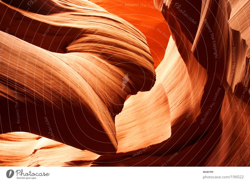 Antelope Canyon Nature Earth Brown Yellow Red Power Passion Calm Colour photo Exterior shot Deserted Day Light Shadow Contrast Light (Natural Phenomenon)