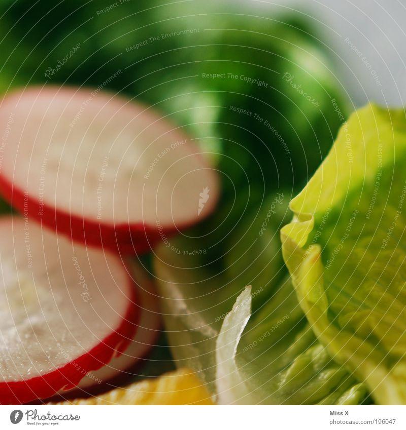 Crunchy Food Vegetable Nutrition Lunch Dinner Buffet Brunch Banquet Organic produce Vegetarian diet Diet Fasting Healthy Overweight Fresh Juicy Radish Lettuce