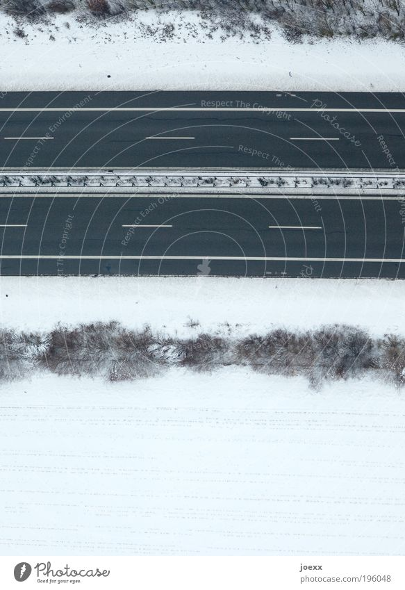 White Winter Snow Field Earth Bushes Stripe Highway Traffic infrastructure Snowscape Weather Perspective Median strip