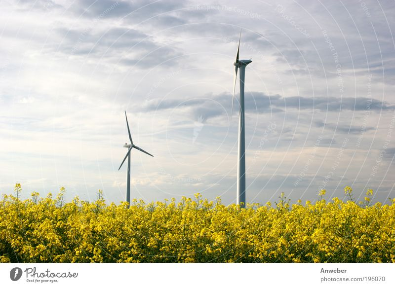 Wind turbines via Rapsfeld Technology High-tech Energy industry Renewable energy Wind energy plant Industry Environment Nature Landscape Plant Sky Summer
